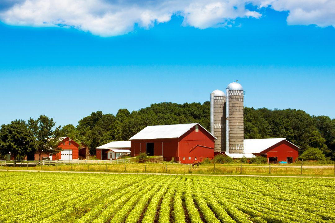 Indiana Agricultural Lawyer Boring Taylor
